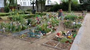 cimitero-san-matteo_15