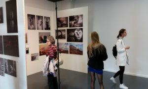 biennale-foto_20