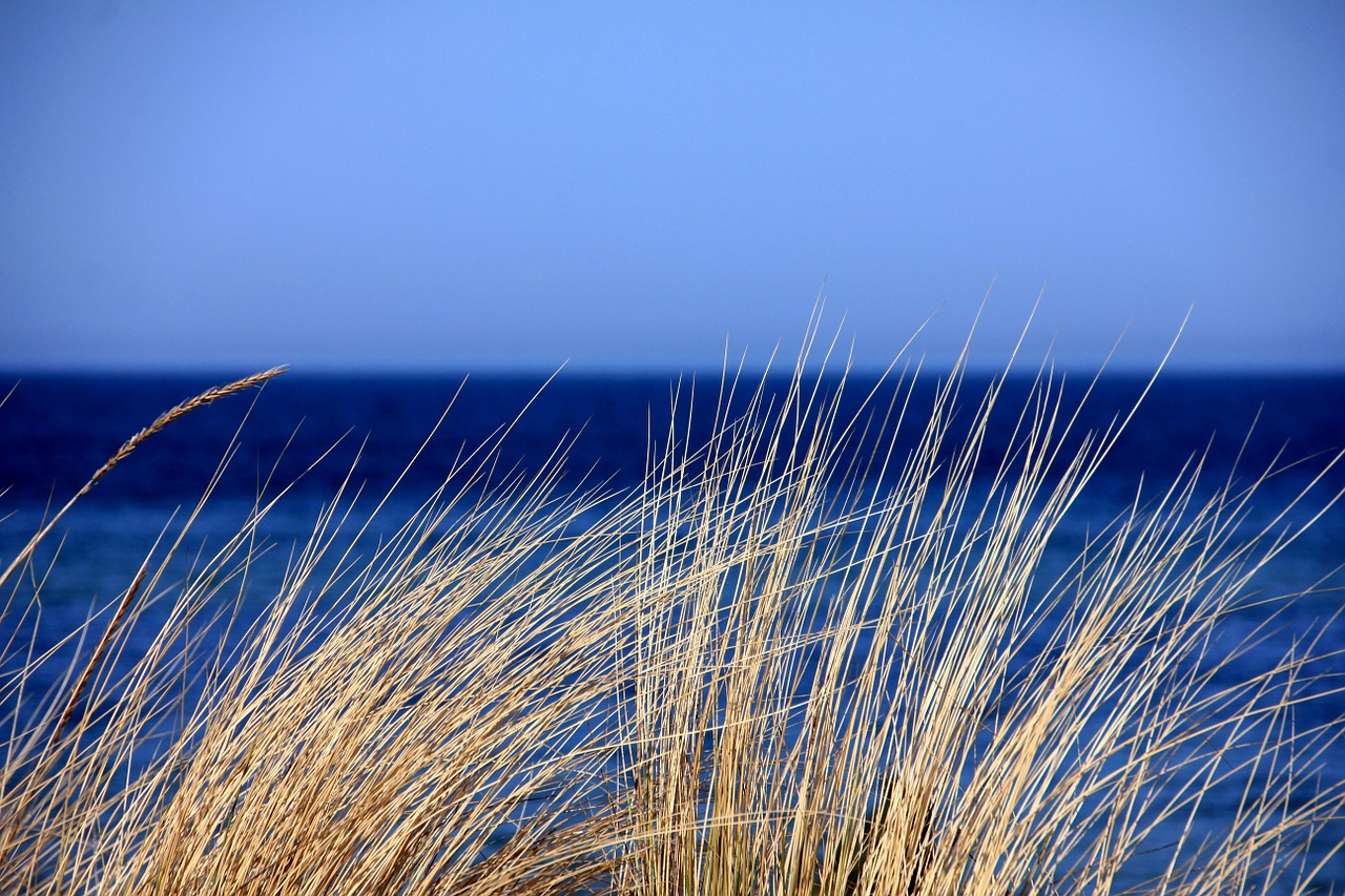mare azzurro
