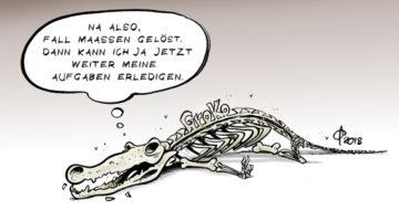 GroKo-Zustand - Condizione della GroKo