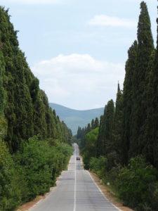 Viale dei Cipressi Bolgheri Castagneto Carducci © CC BY-SA 3.0 Lucarelli WC