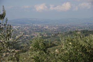 Le colline umbre verso Assisi © NDR
