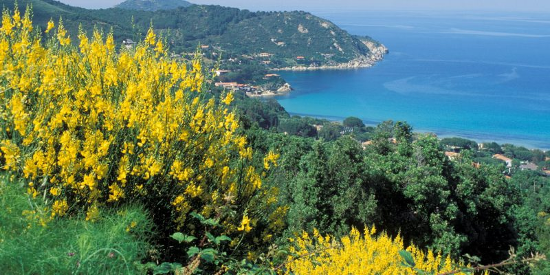 Der Toskana - Costa Sud
