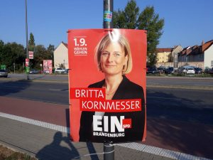 Elezioni regionali tedesche 2019 05 © il Deutsch-Italia