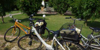 Giro in bicicletta in laguna © Nicoletta De Rossi