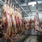 Carne da macello