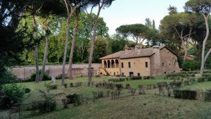 I pini di Roma © il Deutsch-Italia